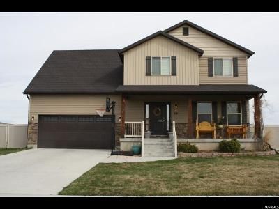 Franklin Single Family Home For Sale: 56 W Cedar Ln