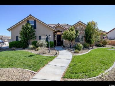 St. George Single Family Home For Sale: 1707 W Shivwits Dr