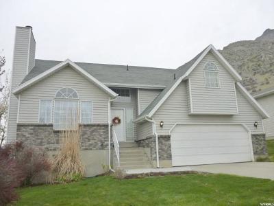 Provo Single Family Home For Sale: 1955 E Oregon S