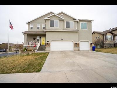 Eagle Mountain Single Family Home For Sale: 4484 E Bridleway Rd