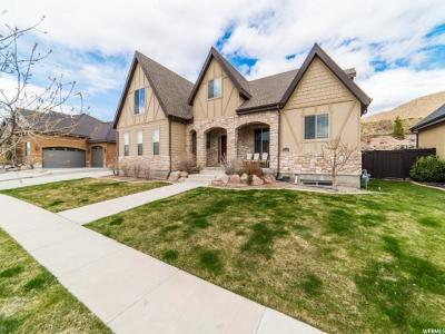 Lehi Single Family Home For Sale: 5224 N Eagles View Dr