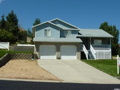 Wasatch County Single Family Home For Sale: 721 E Ridge Dr