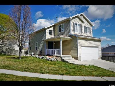 Eagle Mountain Single Family Home For Sale: 3829 E Butterfield Rd