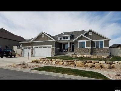 Saratoga Springs Single Family Home For Sale: 2553 S Lilac Ln