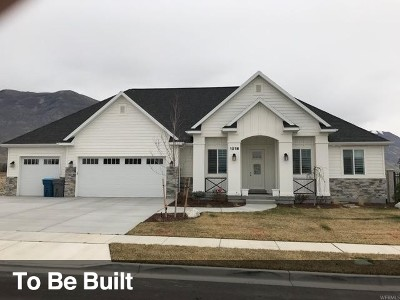 American Fork Single Family Home For Sale: 1017 E 1000 N #6