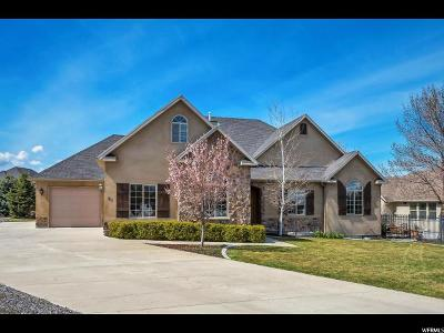 Saratoga Springs Single Family Home For Sale: 91 E Eight Iron Ct S