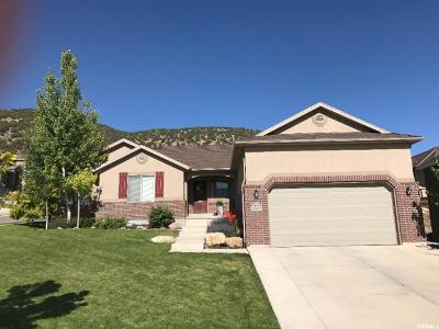 Eagle Mountain Single Family Home For Sale: 6917 N Mohawk St E