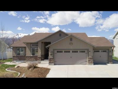 Wellsville Single Family Home For Sale: 599 N 850 E