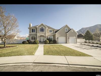 Cedar Hills Single Family Home For Sale: 4552 W Windsor Cir