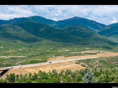 Wasatch County Residential Lots & Land For Sale: 5065 N Lauralwood St