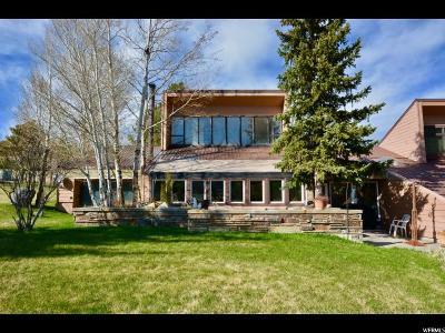 Provo Single Family Home For Sale: 9133 Elderberry Ln E #1