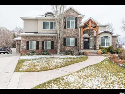 Provo Single Family Home For Sale: 1189 W 1870 N