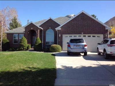 Spanish Fork Single Family Home For Sale: 2487 E Oakridge Dr S