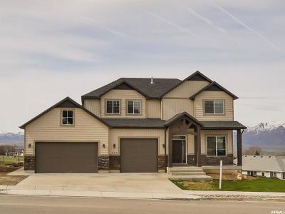 Providence Single Family Home For Sale: 532 E 860 S
