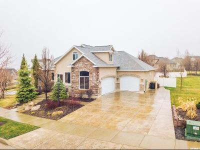 Providence Single Family Home For Sale: 1164 S Forgotten Ln E