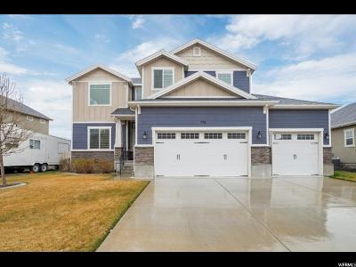 Lehi Single Family Home For Sale: 770 S Willow Park Dr