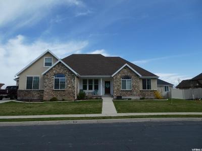 Salem Single Family Home For Sale: 919 E 380 S