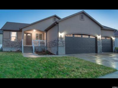 West Jordan Single Family Home For Sale: 7087 W Dry Sycamore Ln