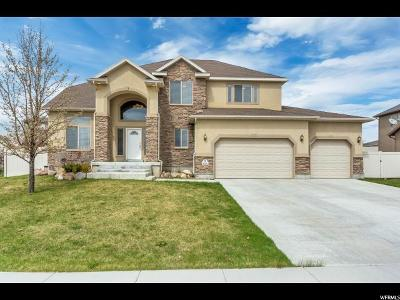 West Jordan Single Family Home For Sale: 6366 W Fish Lake Dr S