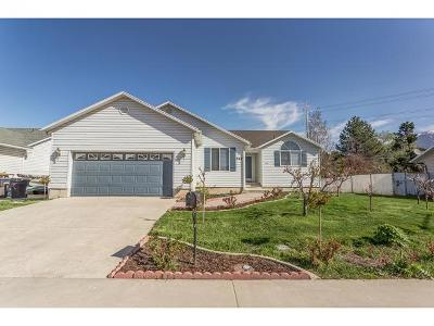 Provo Single Family Home For Sale: 968 W 850 S