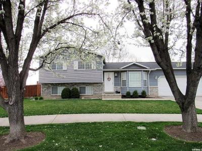 Provo Single Family Home For Sale: 538 S 1440 W