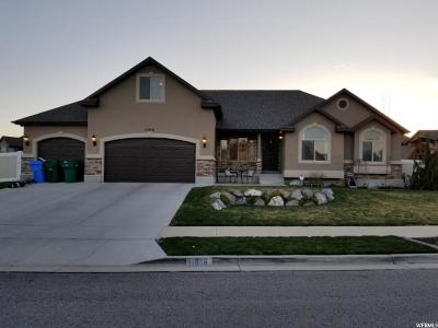 Riverton Single Family Home For Sale: 11916 S Scenic Acres Dr. W