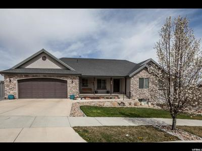 Eagle Mountain Single Family Home For Sale: 3917 E Hopi Rd