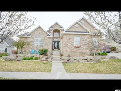 American Fork Single Family Home For Sale: 1251 E Meadow View Ln