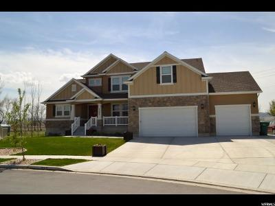 Lehi Single Family Home For Sale: 2269 W Thomas St #19