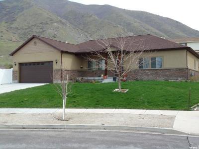 Springville Single Family Home For Sale: 47 S 950 E