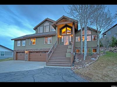 Park City Single Family Home For Sale: 3915 Lariat Rd