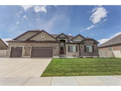 Bluffdale Single Family Home For Sale: 1549 W Aspen Trail Dr S