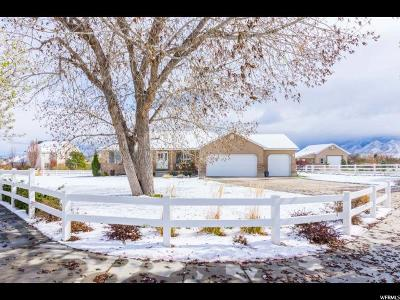 Bluffdale Single Family Home For Sale: 3976 W Fawn Hill Ln