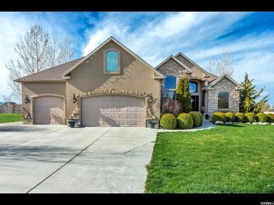 Grantsville Single Family Home For Sale: 347 E Davenport Dr S