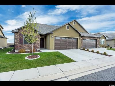 Lindon Single Family Home For Sale: 1519 W 430 N