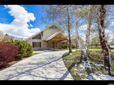 American Fork Single Family Home For Sale: 816 N 500 E