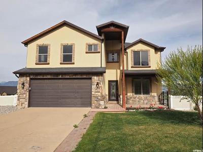 Saratoga Springs Single Family Home For Sale: 3652 S Lake Mountain Dr W