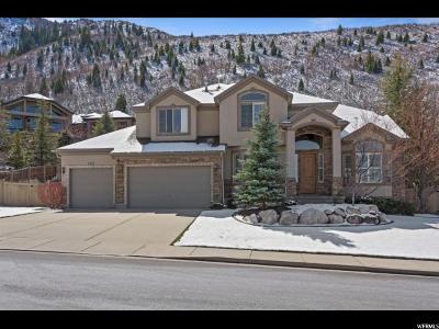 Sandy Single Family Home For Sale: 3638 E Quiet Ridge Cir