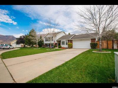 Orem Single Family Home For Sale: 1772 N 940 W