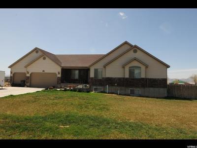Centerfield Single Family Home For Sale: 30 S 500 E