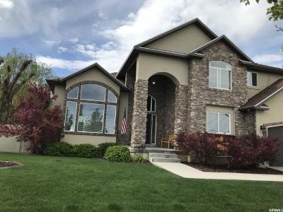 Salem Single Family Home For Sale: 778 E 640 S