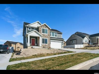 Saratoga Springs Single Family Home For Sale: 1466 S Mountain View Dr