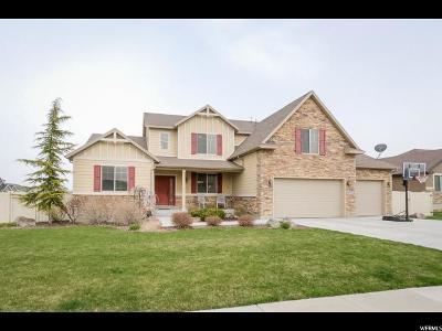 West Jordan Single Family Home For Sale: 8483 S Crowsnest Dr