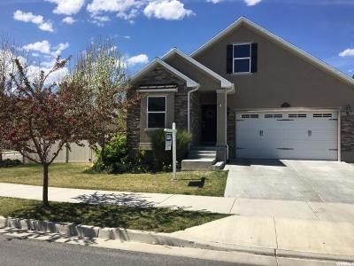 South Jordan Single Family Home For Sale: 11176 S Tothill Way W