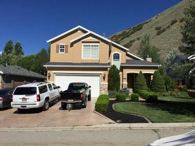 Draper Single Family Home For Sale: 15053 S Randolph Cir E