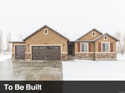 Grantsville Single Family Home For Sale: 450 S Hinckley Rd
