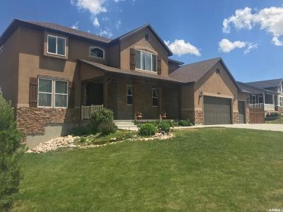 Tooele UT Single Family Home For Sale: $415,000