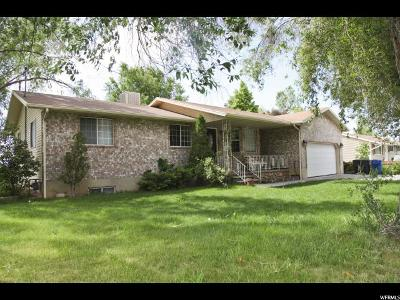 Santaquin Single Family Home For Sale: 113 N 300 W