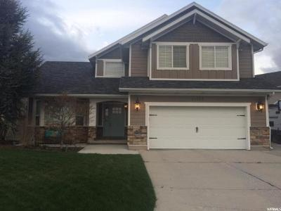 Sandy Single Family Home For Sale: 11123 S Vista Way E
