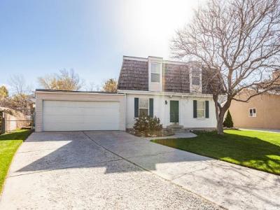 Sandy Single Family Home For Sale: 9025 Bonnet Dr